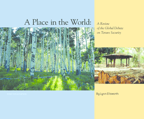 A Place in the World: A Review of the Global Debate on Tenure Security